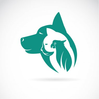 Vector image of an dog cat and bird on white background. Animal