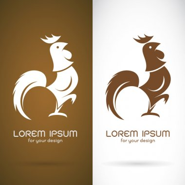 Vector image of an cock design on brown background and white bac