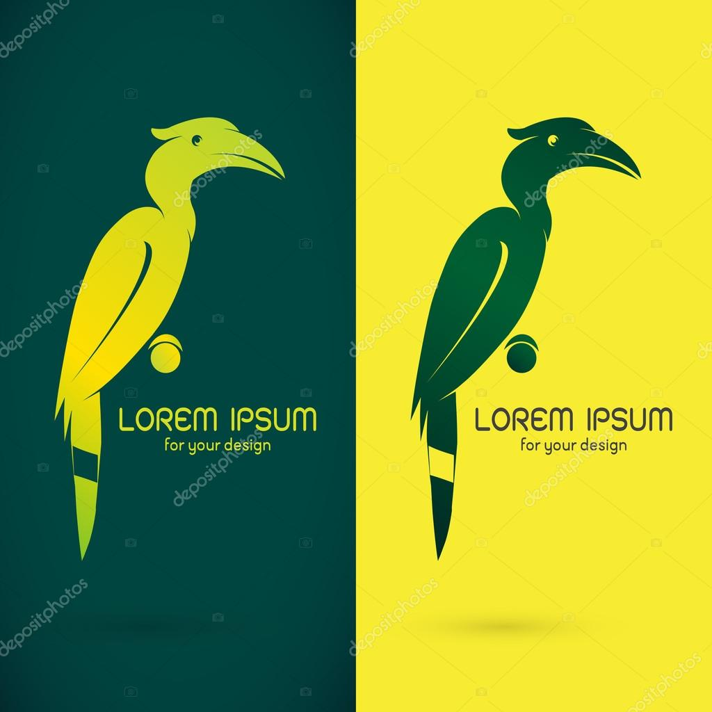 Vector image of an hornbill design on green background and yello