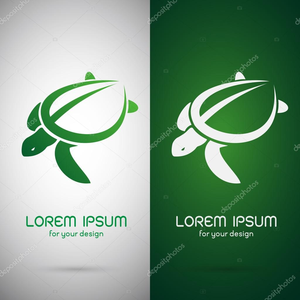 Vector image of an turtle design on white background and green b vector image of an turtle design on white background and green background logo symbol vector by yod67 biocorpaavc