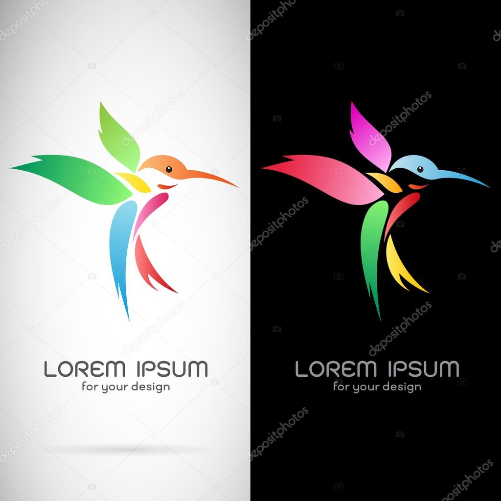 Vector image of an hummingbird design on white background and bl
