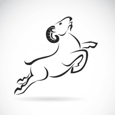 Vector image of an goat design on white background