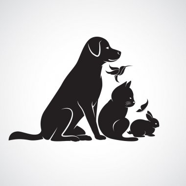 Vector group of pets - Dog, cat, bird,butterfly, rabbit, isolate
