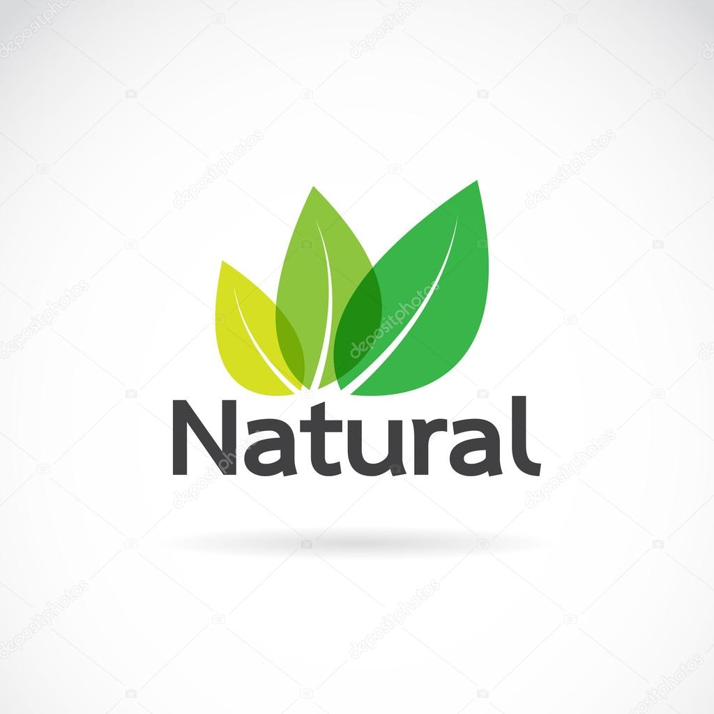 Natural logo design vector template on white background.
