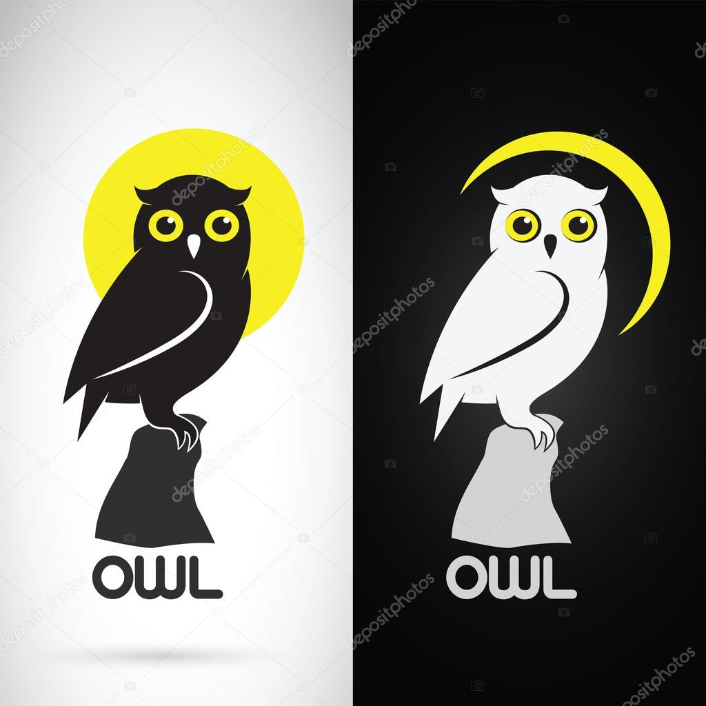 Vector image of an owl design on white background and black back