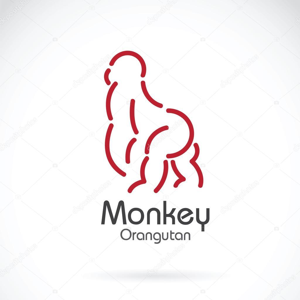 Vector image of monkey orangutan design on white background