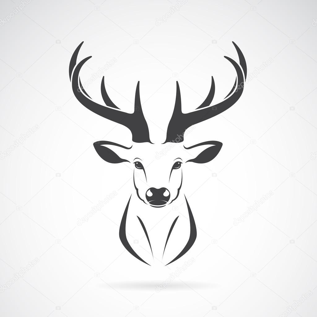 Image vectorielle d 39 un dessin de t te de cerf sur fond blanc image vectorielle yod67 96789504 - Dessiner un cerf ...