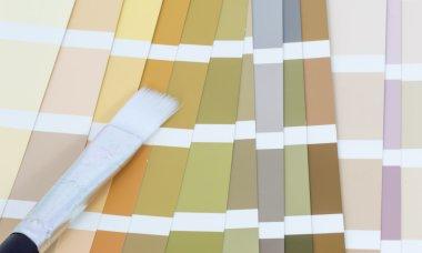 Spectrum color close up