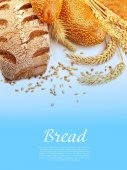 Fotografie Different types of bread