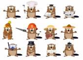 Fotografie Cute cartoon beavers set
