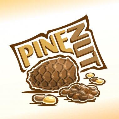 Cedar cone and pine nuts
