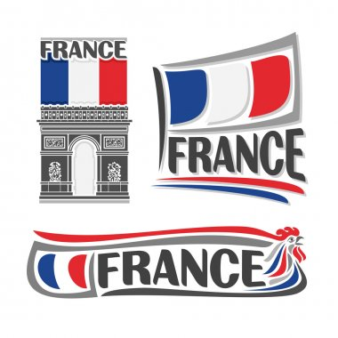 Vector illustration of the logo for France