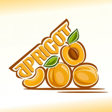 Vector illustration on the theme of apricot