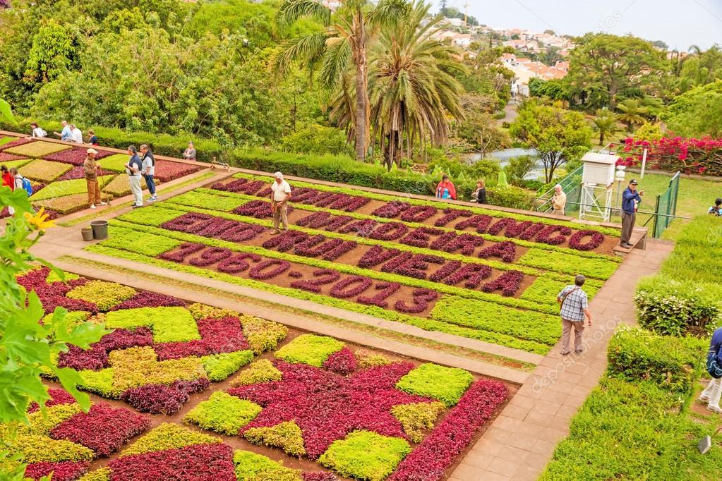 Botanischer Garten Jardim Botanico Madeira Redaktionelles