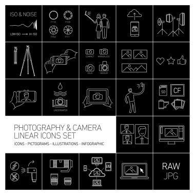 linear vector photography