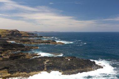 Coastline of the Nobbies in Philip Island