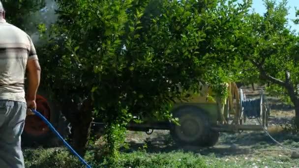 Dospělý muž stříká stromy
