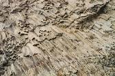 Žebrované textury vulkanity na útes mysu Fiolent