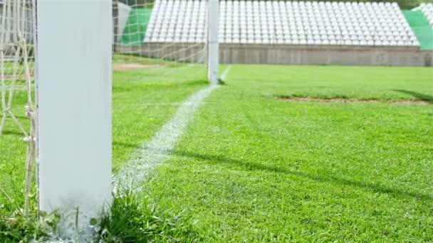 Futball játék. Futball-akció. Golyó megáll, csak előtt a gólvonal