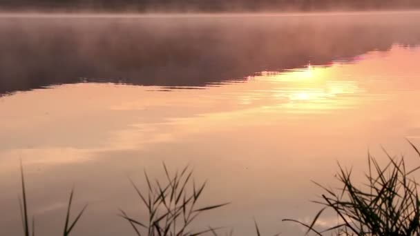 Sunrise on the lake, sunrise over river, morning landscape