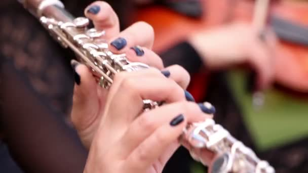 Hudebník hraje na flétnu
