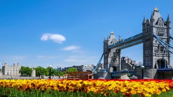 Timelapse shot z Tower Bridge v Londýně na pěkný letní den s Gerber vpředu