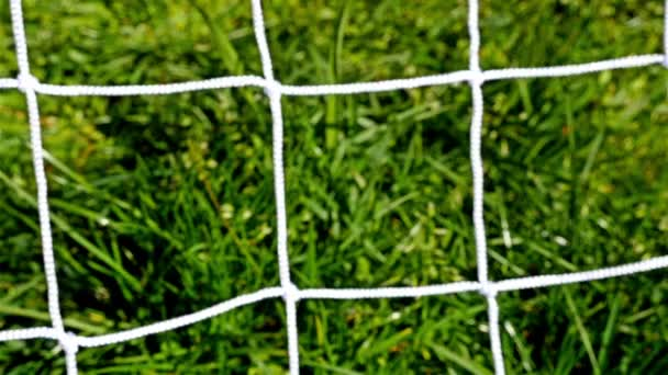 Goal concept. Soccer ball kicked in a football door, close up of tha ball and the net