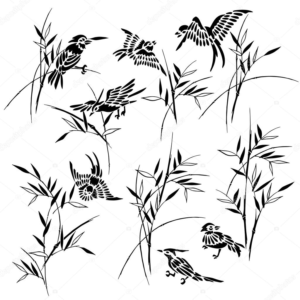 Bamboo bird illustration,