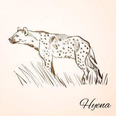 doodle hyena