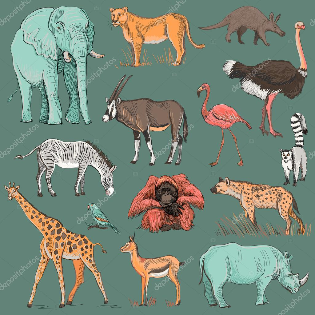 Hand drawn animal planet illustration