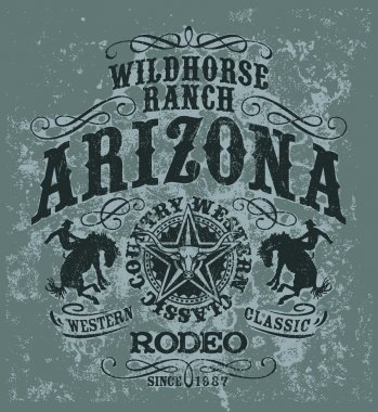 Arizona wild horse  rodeo