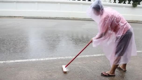 čistá duše dobrovolníků úklidové veřejné cesty, skladem video