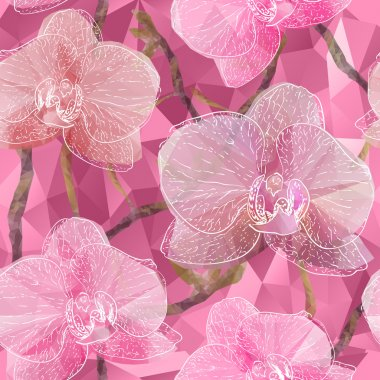 Seamless background with blooming Garden Orchid flowers in trian