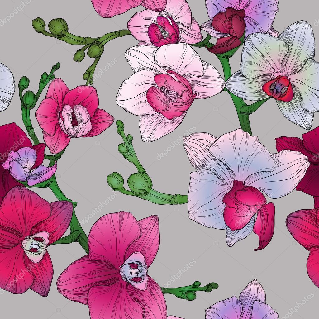 Tropic motif floral de transparente avec main dessin fleurs d 39 orchid es image vectorielle - Dessin d orchidee ...