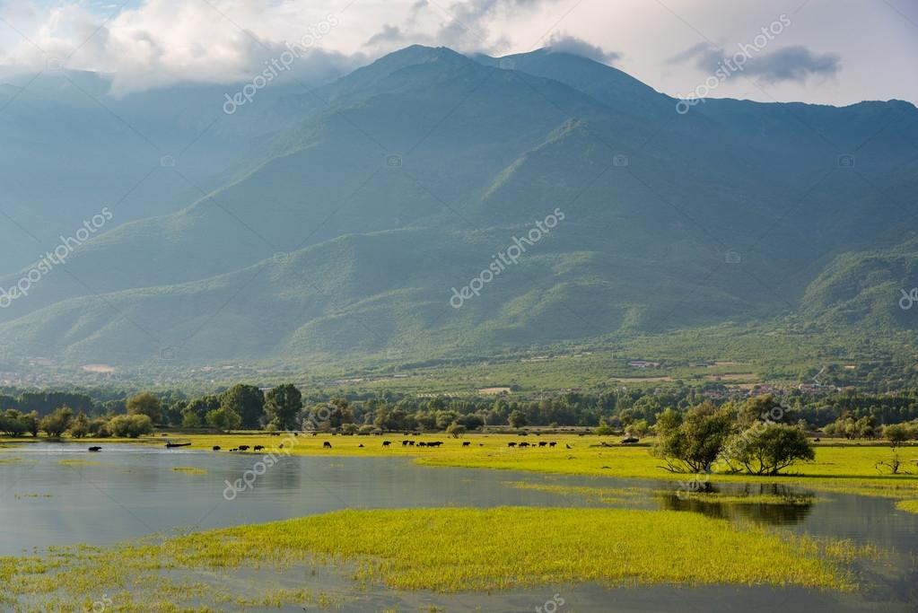 Kerkini lake in Greece