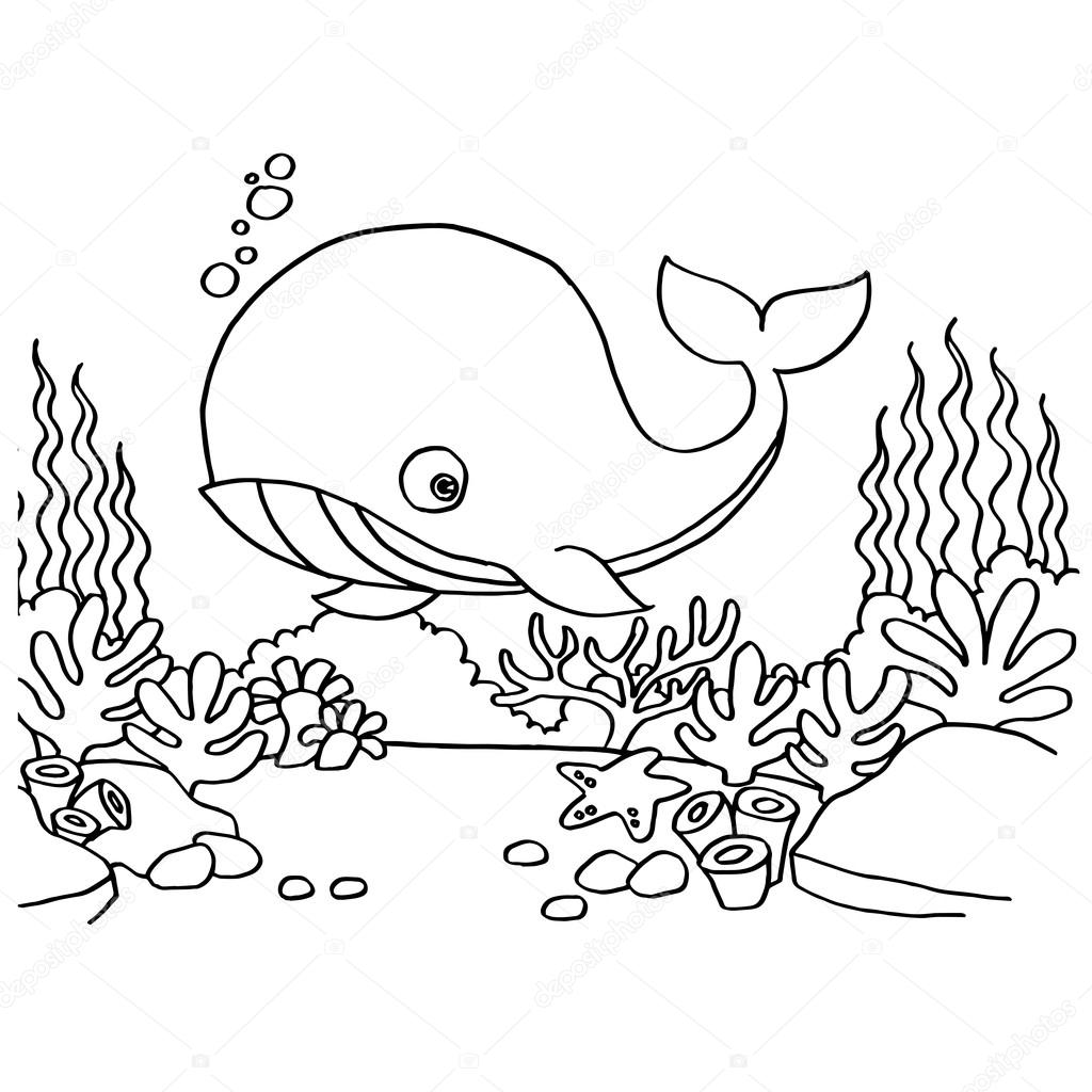 Vector de páginas para colorear de ballenas — Vector de stock ...