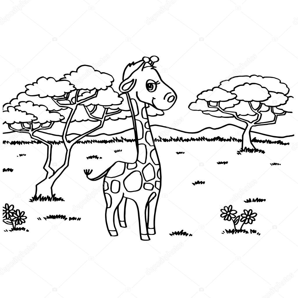 Zürafa Boyama Sayfaları Vektör Stok Vektör Attaphongw 84862948