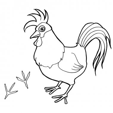 Rooster with paw print Coloring Pages vector