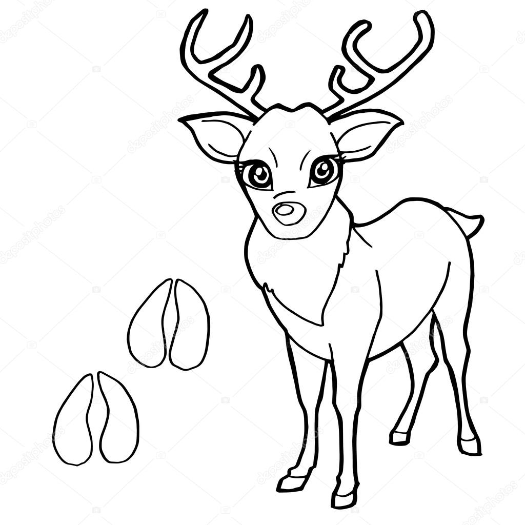 Paw Print With Deer Coloring Page Vector Stock Vector C Attaphongw