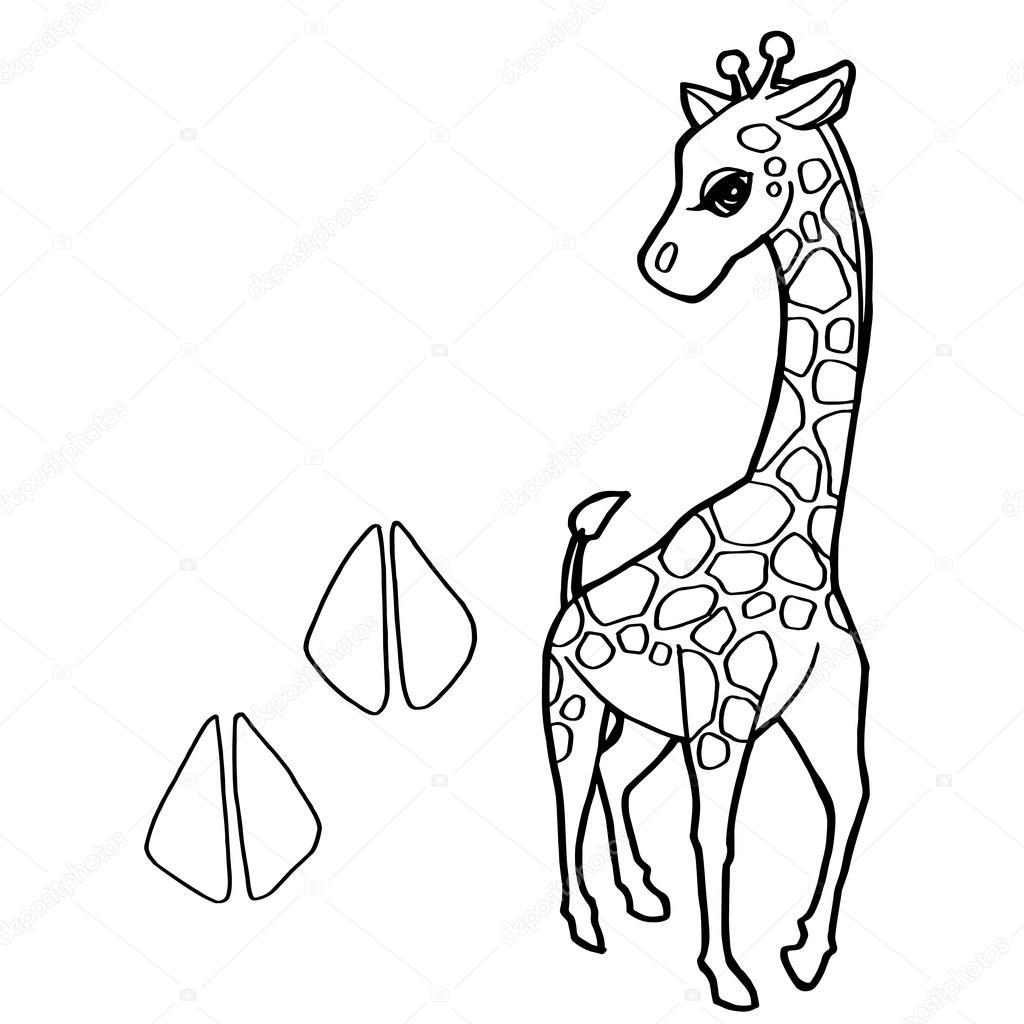 impresión de la pata con el vector de jirafa para colorear — Archivo ...