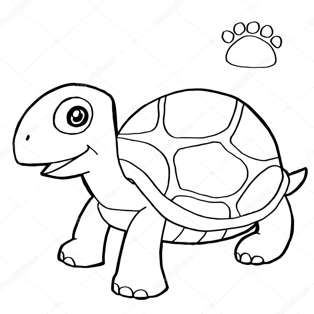 Fotos: tortugas para dibujar | impresión de la pata con tortuga