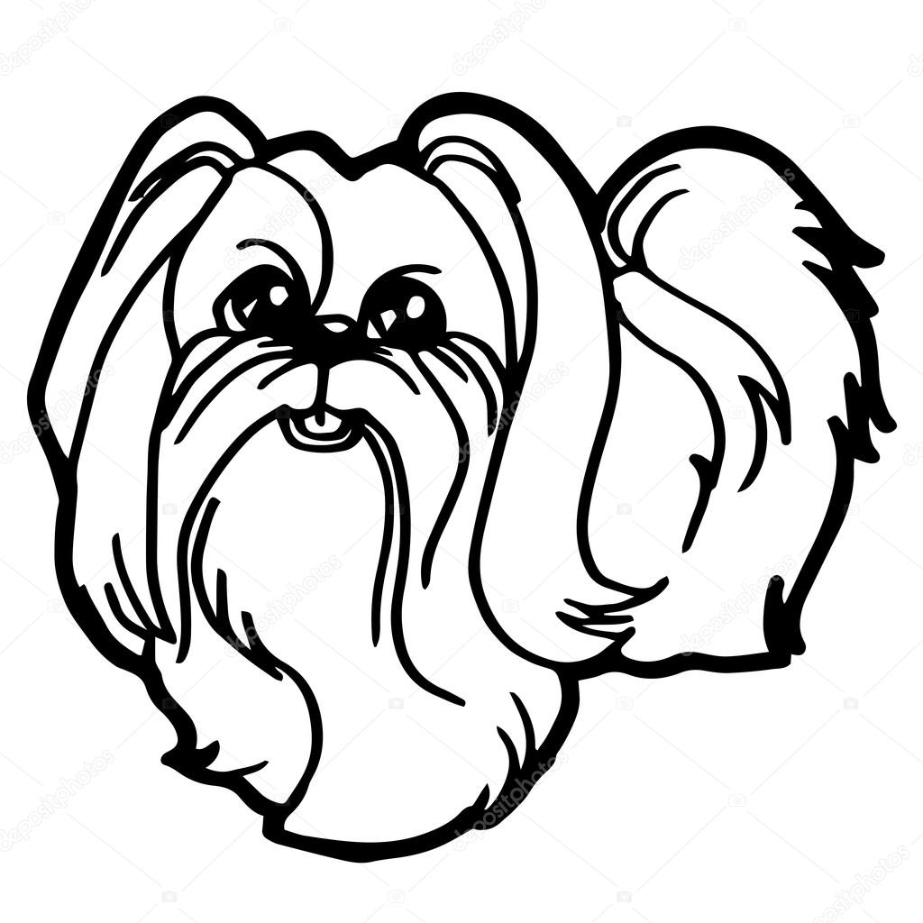 shih tzu puppies coloring pages - cartoon illustration of funny dog for coloring book