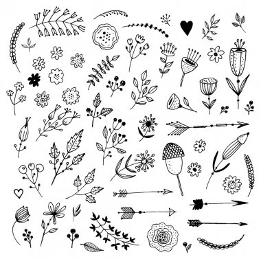 Set of Vintage Floral Hand-Sketched Elements