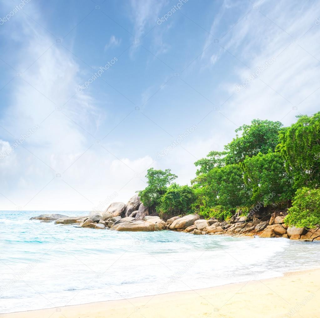 Beautiful view of the tropical beach in summer