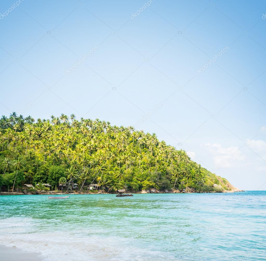 Tropical forest, sea coast and mountains.