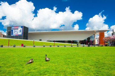 Sloped Lawn across the Museumplein with couple of ducks, the Netherlands.