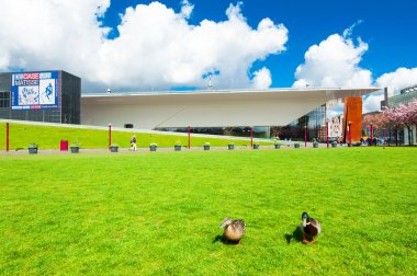 AMSTERDAM-APRIL 30: Couple of ducks on the Museum Square with Stedelijk Museum in the background on April 30,2015.