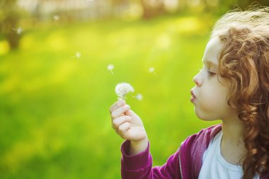 Child with white dandelion in your hand. Background toning insta