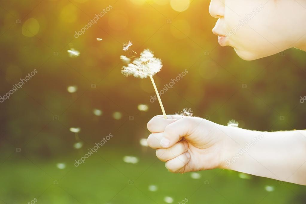 Close-up portrait of child blowing white dandelion. Background t