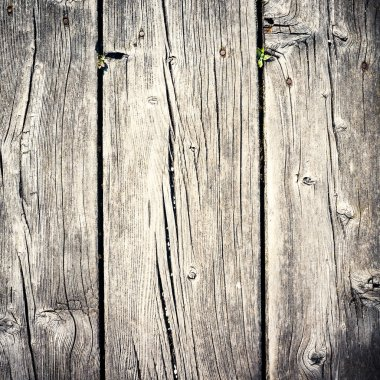 Wood texture background. Filtered image.